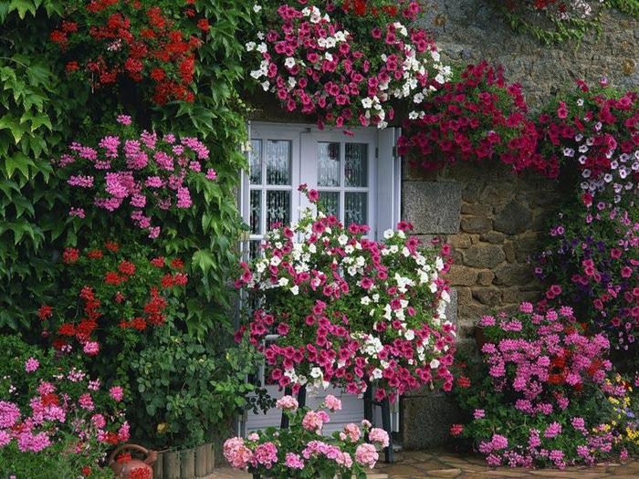 İlkbahara Girerken Bahçe Bakımı Nasıl Yapılmalı?